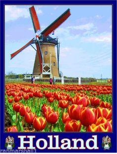 Holland-Dutch-Netherlands-Windmill-Tulips-European-Travel-Advertisement-Poster