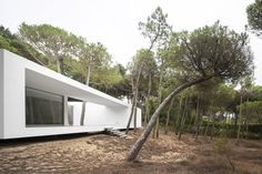 Gallery of Residence in Colares / Frederico Valsassina Arquitectos - 6