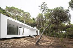 Galeria de Casa em Colares / Frederico Valsassina Arquitectos - 6