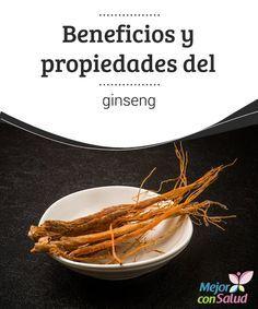 Beneficios y propiedades del ginseng   Muy utilizada en la medicina tradicional china, la raíz de ginseng tiene infinidad de propiedades muy beneficiosas para el organismo. Vamos a conocerlas.