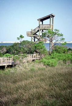Get the bird's eye view from Big Lagoon's four story Observation Tower at East Beach. Pensacola, FL.