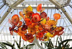 The floral chandelier. I love how the chandelier shows delightful and gorgeous color scheme. The spontaneous movement of the floral design leads to a more cheerful room.