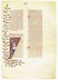 Plinio, Naturalis Historia, 1389 Biblioteca Ambrosiana, Milano