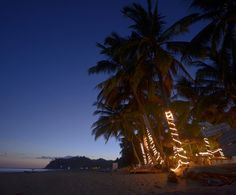 Turn off your phone, turn on the twinkly lights Voyage Costa Rica, Turn Off, Sustainability, Environment, In This Moment, Lights, Sunset, November, Outdoor
