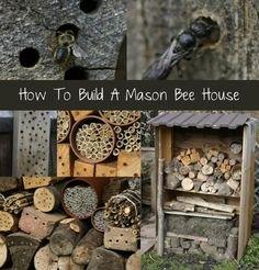How To Build A Mason Bee House...http://homestead-and-survival.com/how-to-build-a-mason-bee-house/