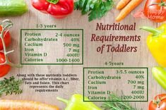 Nutritional requirements of toddlers Iron Vitamin, Vitamin D, Toddler Nutrition, Nutritional Requirements, Balanced Diet, Toddlers, Protein, Salt, Child