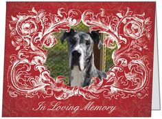 """In Memory"" Cards support Harlequin Haven Great Dane Rescue! Cards are 5.47x4.21"" folded, w/ white envelope. Mix & match from 15 designs. 50 cents each plus shipping; must buy in increments of 5 (total cards). Thanks! http://hhdane.org/howtohelp/in_memory_cards.htm"