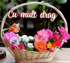 Grapevine Wreath, Grape Vines, Floral Wreath, Wreaths, Home Decor, Floral Crown, Decoration Home, Door Wreaths, Room Decor