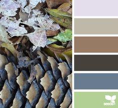 nature hues - design seeds