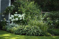 Vit rabatt Outdoor Landscaping, Outdoor Gardens, Landscape Design, Garden Design, Garden Plants Vegetable, Garden Borders, White Gardens, Garden Cottage, Shade Garden