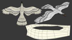 3d bird topology - Google Search