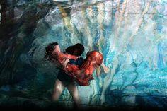 Mysterious Stories Unfold Underwater