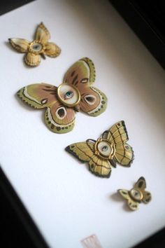 Cabinet of Curiosities Specimen no. 5 The Green Moth Eye Flies by Mab Graves