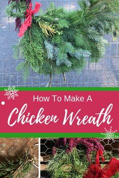 Make a Chicken Holiday Wreath Christmas Reath, Christmas Tree Farm, Christmas Fun, Christmas Activities, Christmas Projects, Chicken Signs, Chicken Wire, Holiday Wreaths, Holiday Crafts