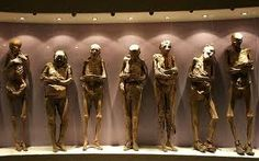 Museo del las Momias, Guanajuato Mexico.  111 remarkably preserved mummies were exhumed from the Santa Paula Pantheon.