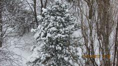 img_2991 Bucharest, Romania, Snow, Travel, Outdoor, Outdoors, Viajes, Destinations, Traveling
