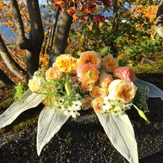 Soft boho chic bouquet with garden roses, ranunculus, Queen Anne's lace, and lamb's ears