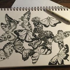 I really like drawing like this it so relaxing I just listen to music and the time just flys by 💕😋off in my own world I guess 🙃#art#drawing #ink#artwork #artforsale#artgallery #butterfly #illustration #artistsoninstagram #artstagram #sketchbook #sketch #sketches #artlove#smile#art_spotlight #artaddict #artprocess #originalartwork #illustrate #gallery