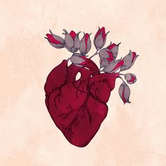 Animated gif shared by Anahi Guerrero. Find images and videos about love, gif and roses on We Heart It - the app to get lost in what you love. Arte Com Grey's Anatomy, Anatomy Art, Gif Animé, Animated Gif, Animated Heart, Gif Art, Anatomical Heart, Human Heart, Graphics Fairy