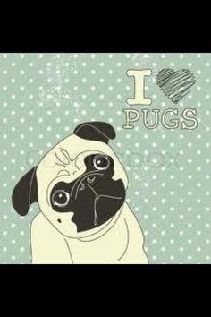 #Pugs ❤