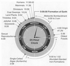 Origin and evolution of life into a 24 hour clock; source: History of life, Department of Geoscience of the University of Wisconsin, USA 24 Hour Clock, Time Clock, Earth Science, Science And Nature, History Of Earth, Before Midnight, Midnight City, Scientific Method, Charles Darwin