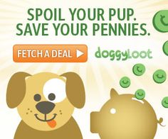 You Brew My Tea: Hot Deals on Dog Products at Doggy Loot