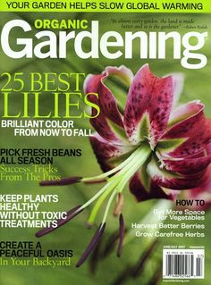 ... FULL ARTICLE @ http://wowthatsmygarden.com/you-dont-need-to-hire-an-expensive-landscaper-use-these-simple-tips-instead/
