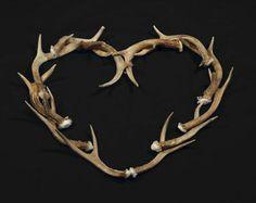 Love antlers