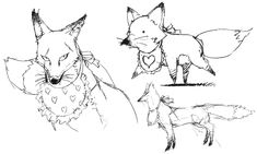 Fox Sketches - Characters & Art - Persona 4