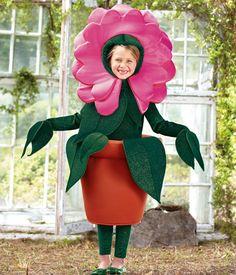 Costume inspiration.