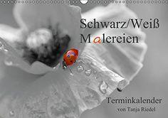 Schwarz-Weiß Malereien Terminkalender von Tanja Riedel (Wandkalender 2015 DIN A3 quer): Tolle Schwarz-Weiß Fotografien mit einem kleinen Farbtupfer ... in dem Bild (Monatskalender, 14 Seiten) von Tanja Riedel http://www.amazon.de/dp/3660666319/ref=cm_sw_r_pi_dp_LeVyub10FBZZW