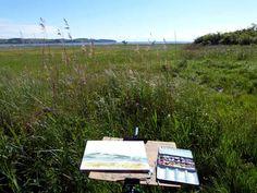 Impressionen von der Malreise nach Rügen | Malkurs auf den Boddenwiesen von Middelhagen (c) FRank Koebsch (5)