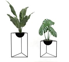b2affeb60 Plants are the elements that give life to an interior. But we are tired of