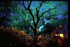 Houston Outdoor Lighting, Indoor Art Lights, Landscape Lighting Designs, Home Automation Blog
