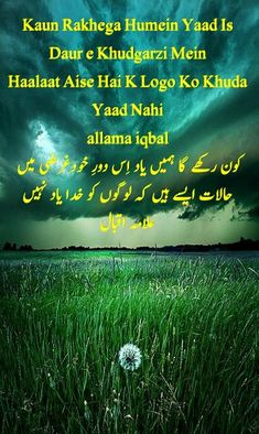 Cute Romantic Quotes, Allama Iqbal, Iqbal Poetry, Crow, Life Quotes, Quotes About Life, Raven, Quote Life, Living Quotes
