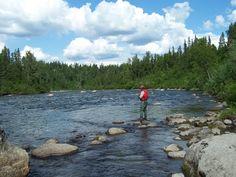 Fly Fishing on Lake Creek Light Novel, Fly Fishing, Northern Lights, Novels, Mountains, Nature, Travel, Voyage, Aurora