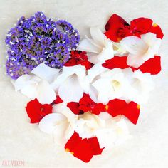 I created this patriotic floral heart in remembrance of the men and women that sacrificed their lives for America. I used Sea Lavender, petals from a Mr. Lincoln rose, and white Gladiolus flowers from my garden. May we never forget our country's heroes! #MemorialDay #America #Patriotic #AmericanFlag #USFlag #StarsandStripes #Flowers #RedWhiteandBlue #PatrioticHeart #Heart #Love #Floral #FlowerArrangement #AmericasHeroes #ILoveUSA #USA American Spirit, American Flag, Gladiolus Flower, Us Flags, Memorial Day, Flower Arrangements, Hero, Floral, Flowers