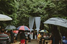An Intimate Woodland Ceremony in British Columbia, Canada | Photography by http://brittanyesther.com/