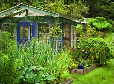 Love this one!!  Greenhouse out of old windows :)