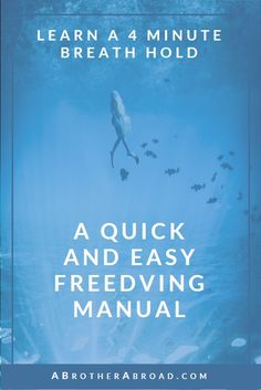 Hold your breath for 4 minutes - a quick and easy freediving manual and guide to freediving breathing techniques Scuba Diving Gear, Cave Diving, Scuba Travel, Stress, Ocean Sounds, Maui Vacation, Breathing Techniques, Travel Workout, Training Plan