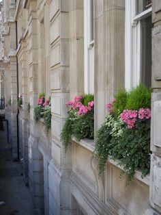 London Town Home Window Boxes   OMG Lifestyle Blog