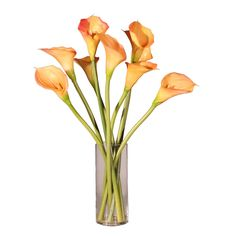 Calla Lilies with Acrylic Water