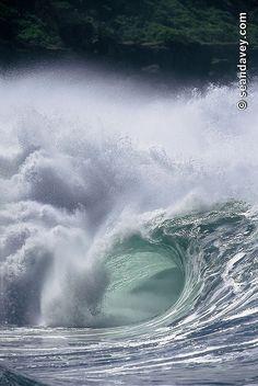 A hollow tubing wave at Waimea Bay, on the nrth shore of Oahu, Hawaii.