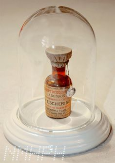Everything looks cool under a cloche/glass dome---- even an old medicine bottle Old Medicine Bottles, Old Bottles, Perfume Bottles, Apothecary Pharmacy, Vintage Medical, Practical Magic, Message In A Bottle, Medical Problems, Medical History