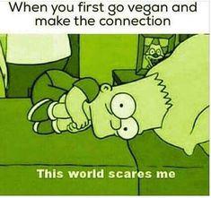 Now I eat so good that I can't understand why more people don't go Vegan. Why Vegan, Vegan Vegetarian, Vegetarian Quotes, Vegan Food, Funny Vegan Memes, Funny Humor, Reasons To Go Vegan, Vegan Facts, Vegan Animals