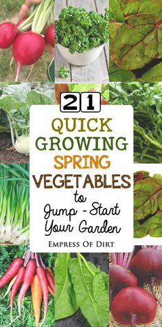 21 Quick-growing spring vegetables to jump-start your garden. There\'s all sorts of choices like carrots, beets, radishes, and broccoli raab, plus a wide range of leafy greens that grow from seed to plate in 60 days. Come see how to get started. #sponsored