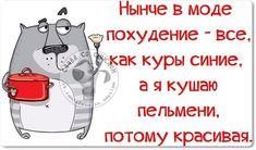 Забавные фразочки в картинках (25 фразочек) » RadioNetPlus.ru развлекательный портал