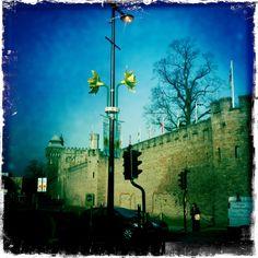 Cardiff Castle, at St David's Day  Photo: Charlotte Bennett
