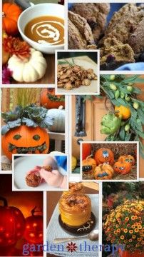 Some of the Pumpkin Projects on Garden Therapy - Garden Therapy