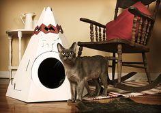 24 món đồ nội thất thú vị dành cho người yêu mèo - Kenh14.vn